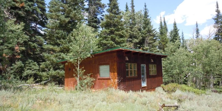 thumbnail_1CabinExteriorfromRoad078[1]